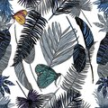 Seamless Pattern With Tropical Leaves And Butterfly. Stock Images - 106680974