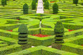 Geometrical Hedges Royalty Free Stock Photography - 10678977