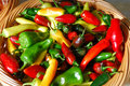 Multicolored Peppers In A Basket. Royalty Free Stock Photo - 10697145
