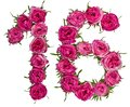 Arabic Numeral 16, Sixteen, From Red Flowers Of Rose, Isolated O Royalty Free Stock Photography - 106984207