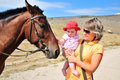 Mother Habituating Her Baby With Horse Royalty Free Stock Photos - 10704688