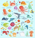 Underwater Sea Life Vector Set Royalty Free Stock Images - 107074379