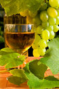 Concept Grape Wine Royalty Free Stock Photography - 10723337