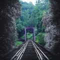 Artistic Nature Photography Of A Vintage Train Tracks Bridge Fading In Color Into The Forest Royalty Free Stock Images - 107204779