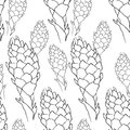 Seamless Pattern Tropical Flower Of Ginger  Coloring  Torch. Vec Stock Images - 107291674