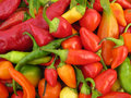 Chili Peppers Paprika Full Frame Royalty Free Stock Images - 10742299