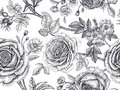 Seamless Pattern With Rose Flowers. Royalty Free Stock Photos - 107480638