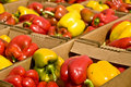 Bell Peppers Stock Photography - 10755342