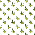 Olive Branch Seamless Pattern. Natural Background Design With Olives For Olive Oil Or Cosmetics Products, Vector Illustration Royalty Free Stock Photo - 107761285