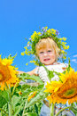 The Child In Sunflowers Stock Photo - 10791080