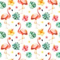 Handpainted Watercolor Seamless Pattern With Multicolored Flower,tropical Leaves,flamingo Bird Stock Images - 108070634