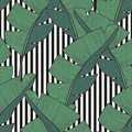 Vector Seamless Pattern With Banana Leaves For Design Royalty Free Stock Images - 108170659