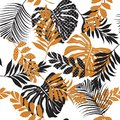 Vector Seamless Pattern Beautiful Artistic Silhouette  Tropical Stock Photos - 108255233
