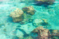 Crystal Clear Tropical Sea Royalty Free Stock Images - 10860279