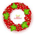 Round Colored Frame Composed Of Red Currant. Vector Card Illustration. Fruit Label. Circle Currant Berries Fruit And Royalty Free Stock Photos - 108612858