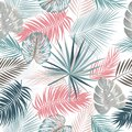 Seamless Vector Pattern Of Tropical Leaves Of Palm Tree Royalty Free Stock Photos - 108755118