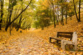 Bench On Path In Park Royalty Free Stock Images - 10884979