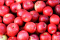 Red Apples Stock Photos - 10923633
