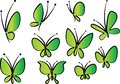 Flower And Butterfly Drawing Background Stock Photo - 109221360
