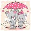 Two Cute Kittens With Umbrella Under The Rain Royalty Free Stock Photography - 109370757