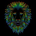 Isolated Iridescent Outline Head Of Lion On Black Background. Rainbow Line Cartoon King Of Animals Portrait. Curve Lines. Stock Photography - 109395302