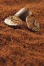Ground Coffee And Beans Royalty Free Stock Photography - 10986137