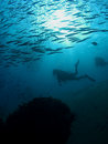 Divers Stock Photography - 1100112