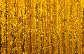 Abstract Golden Glitter Curtain Background Stock Photos - 110731783