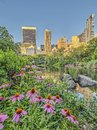 Central Park, New York City Spring Royalty Free Stock Photo - 111015335