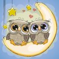 Two Cute Owls Is Sitting On The Moon Stock Photo - 111115350