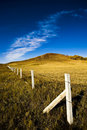 Wire Fence Stock Photo - 11131020