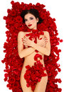 Girl On Roses Petals Royalty Free Stock Photography - 11139687