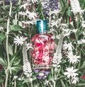 Natural Cosmetics Glass Bottle With Pink Liquid: Tonic , Makeup Fixing Mist Or Perfume On Herbal Leaves And Wild Flowers Stock Photo - 111326140