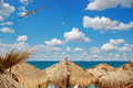 View Of Sea Over The Palm Leaves Roofs Royalty Free Stock Image - 11143796