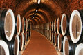 Long Rows Of Vine Tuns Stock Photography - 11170832