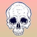 Human Skull Hand Drawn In Tattoo Style. Royalty Free Stock Photos - 111830878