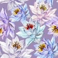 Beautiful Floral Seamless Pattern. Large Colorful Lotus Flowers On Lilac Background. Hand Drawn Illustration. Watercolor Painting. Royalty Free Stock Image - 112033556