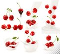 Set Of Ripe Sweet Cherries With Leaves And Splash Of Milk. Royalty Free Stock Photography - 112238167