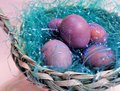 Speckled Violet Eggs In A Woven Basket 2 Stock Photos - 112356823