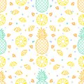 Pineapple Fruits Seamless Pattern Background Vector Format Stock Image - 112646691