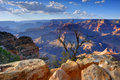 Grand Canyon Royalty Free Stock Images - 11275249