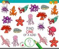 Find One Of A Kind Game With Sea Life Animals Royalty Free Stock Photography - 113156827