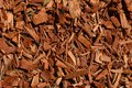 Eucalyptus Bark Mulch Background Stock Image - 113288371
