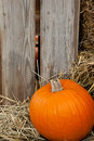 A Pumpkin In Front Of A Barn Royalty Free Stock Photo - 11331435