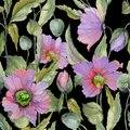 Beautiful Lilac Poppy Flowers With Green Leaves On Black Background. Seamless Floral Pattern. Watercolor Painting. Stock Photo - 113512980