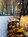 Empty Bench In A Autumn Park Royalty Free Stock Image - 11403586
