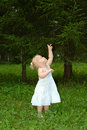 Pretty Little Girl Walk In The Coniferous Forest. Stock Images - 11415264