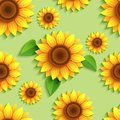 Floral Green Seamless Pattern With 3d Sunflowers Royalty Free Stock Photo - 114286675