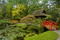 Autumn In Japanese Garden Royalty Free Stock Images - 11430979