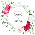 Floral Geometrical Vector Design Frame Stock Photography - 114383782